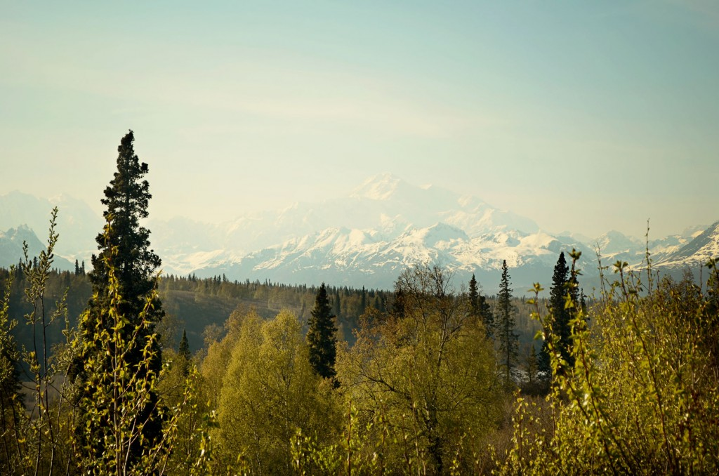 Trip to Anchorage11
