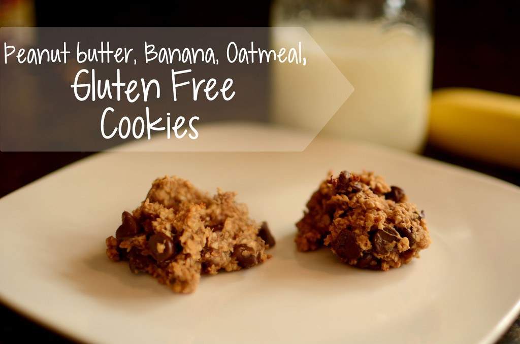 Peanut Butter, Banana, Oatmeal, Gluten Free Cookies, Oh My! |