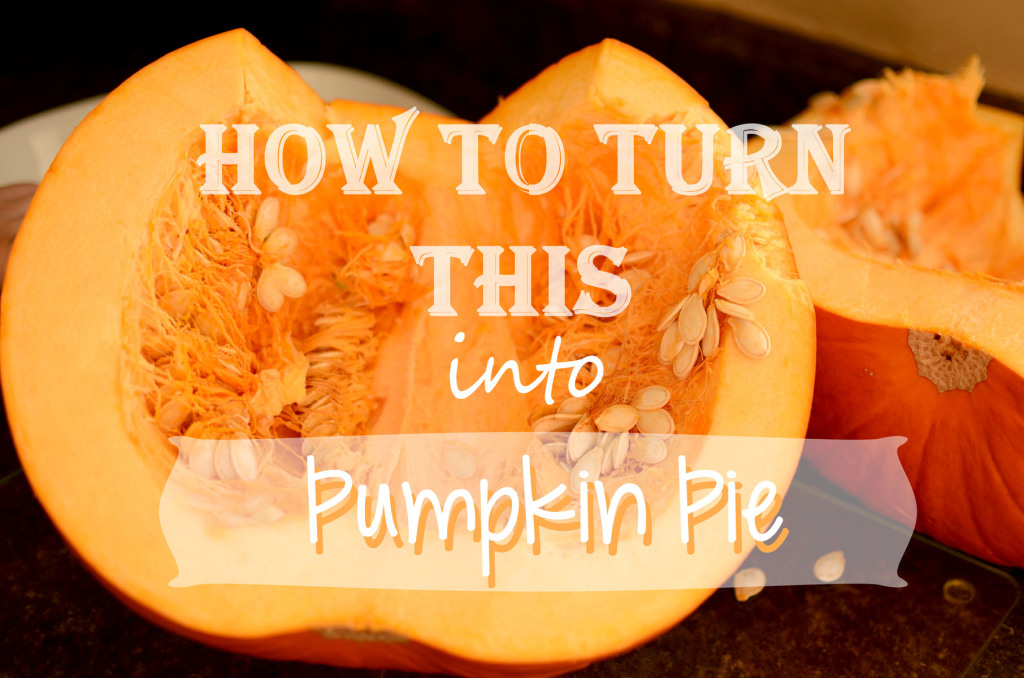 How to turn  your fall or Halloween pumpkins into puree to be used in your favorite pumpkin recipes.