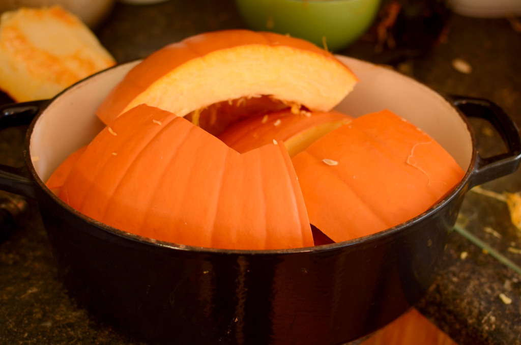 Pumpkin Puree004