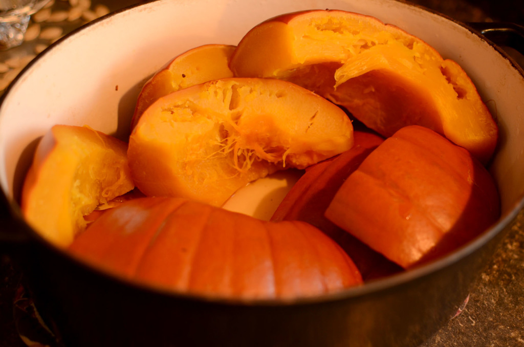 Pumpkin Puree005