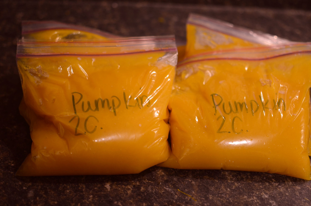 Pumpkin Puree008