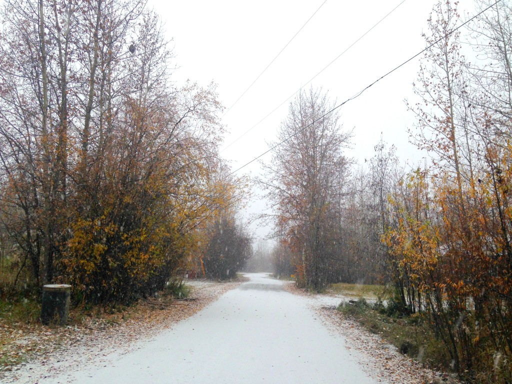 Snow in September | 64 Degrees North